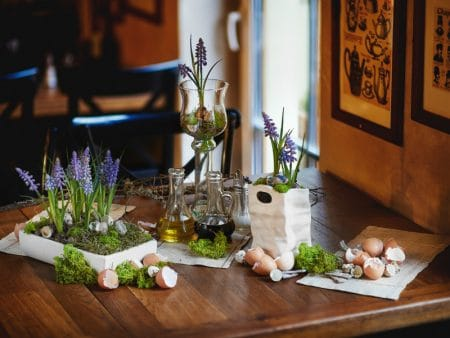 Grape Hyacinth's Arrangement