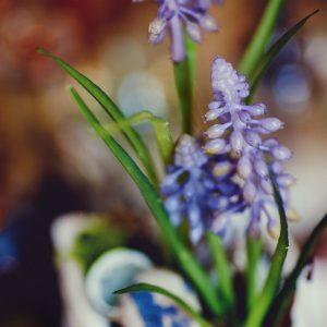 Let's Get Blooming - Grape Hyacinth Bag