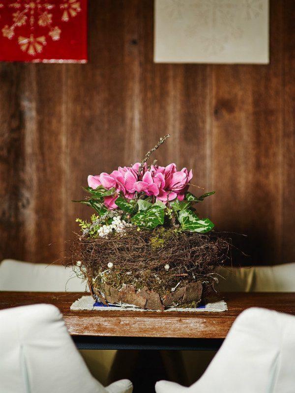 rustycal chalet cyclamen handmade pot in hotel