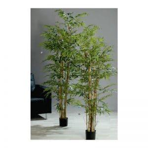Office Bamboo Tree