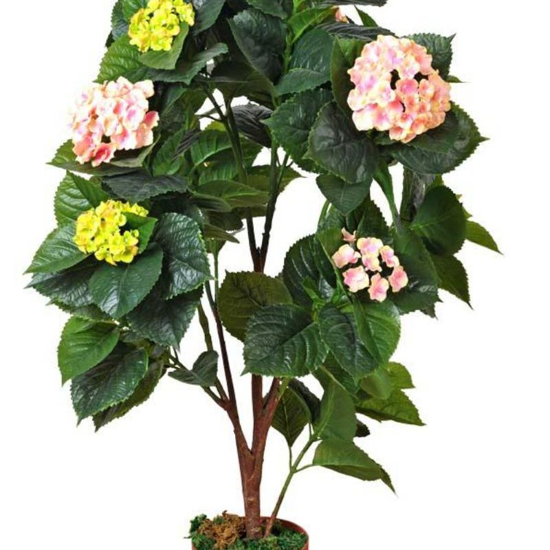pink-hydrangea-s