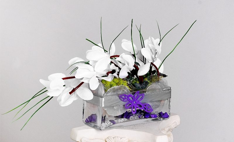 white-cyclamen-in-glass-s