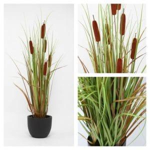Bulrush Grass 110 cm