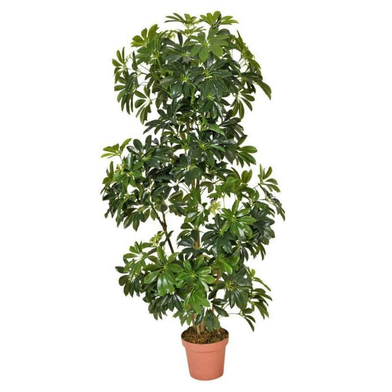 artificial Schefflera tree