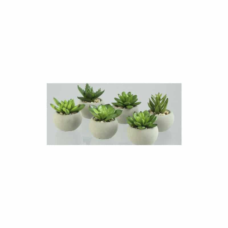 Mini Artificial Succulent
