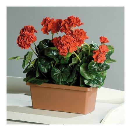 geranium artificial plant