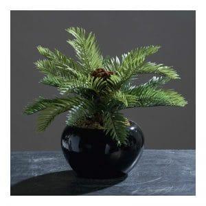 Palm Ceramic Pot 28 cm