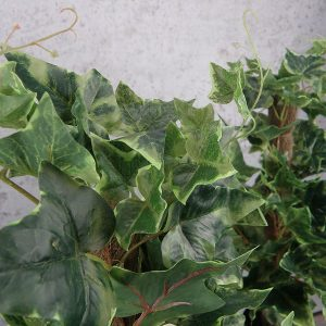 Artificial Ivy Plant