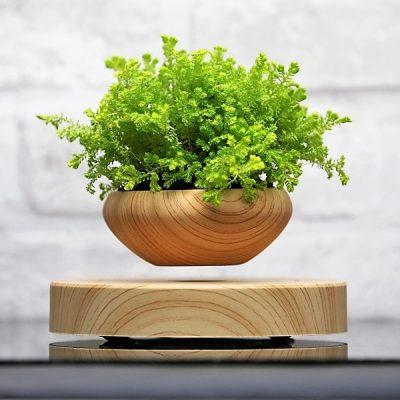 air bonsai how to use it