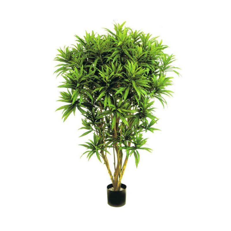 atificial tree dracena reflexa jamaica