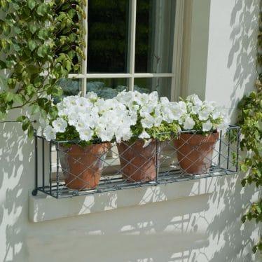 Window box plant pot ideas