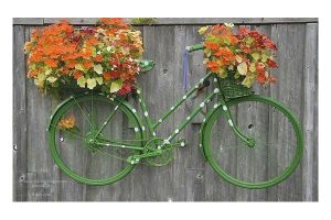 bicycle as alternative plant pot ideas