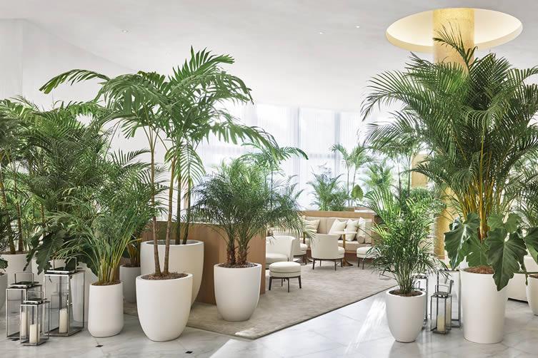 Trees in hotel lobby