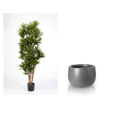 dracaena 180 cm grey pot