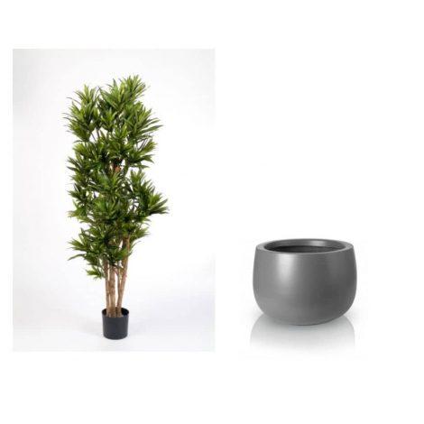 dracaena-180-cm-grey -pot