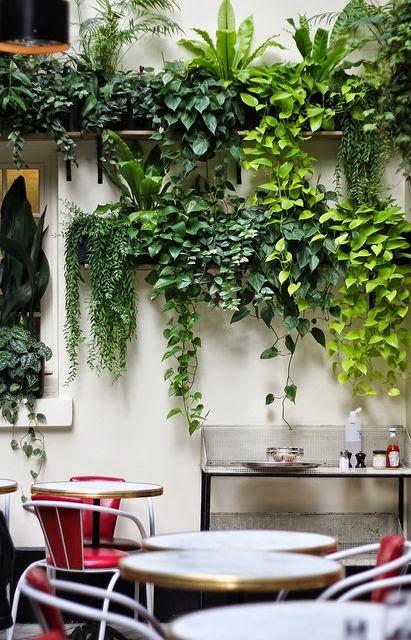 Trailing plants as living wall artificial plants