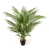 Forest Areca Palm 80 cm