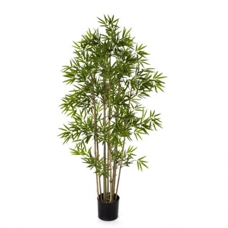 Japanese Bamboo #2