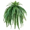 medium artificial fern