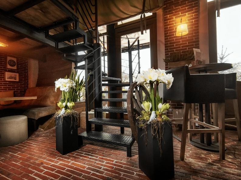 Modern Eclectic – Amaryllis