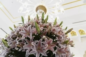 Floresy